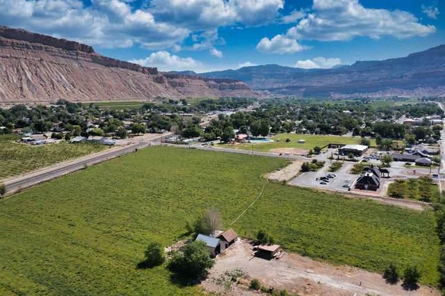 TBD Elberta Avenue, Palisade, CO 81526 (MLS #20212854) :: The Grand Junction Group with Keller Williams Colorado West LLC