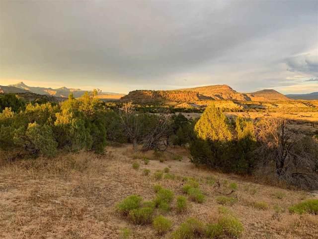 13865 45 1/2 Road, Mesa, CO 81643 (MLS #20212913) :: Lifestyle Living Real Estate