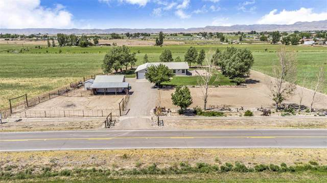 1280 M Road, Loma, CO 81524 (MLS #20212938) :: Michelle Ritter