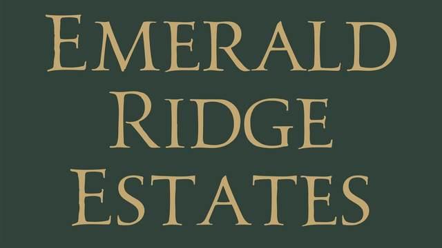 853 Fire Agate Lane, Grand Junction, CO 81506 (MLS #20212958) :: Western Slope Real Estate