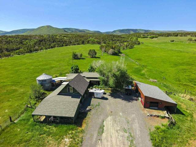 10491 54 7/10 Road, Molina, CO 81646 (MLS #20212967) :: Lifestyle Living Real Estate