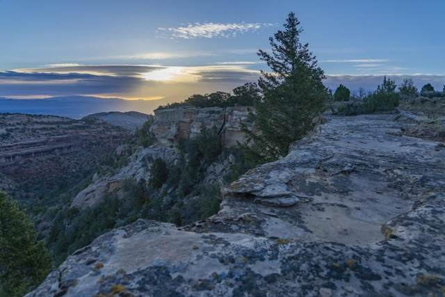 21720 Rough Canyon Road, Grand Junction, CO 81507 (MLS #20212983) :: The Joe Reed Team