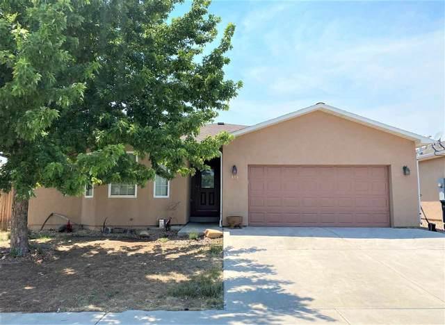 409 29 1/2 Road, Grand Junction, CO 81504 (MLS #20213020) :: Michelle Ritter