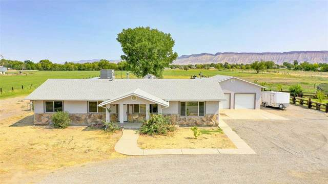 3114 D Road, Grand Junction, CO 81504 (MLS #20213043) :: The Kimbrough Team | RE/MAX 4000