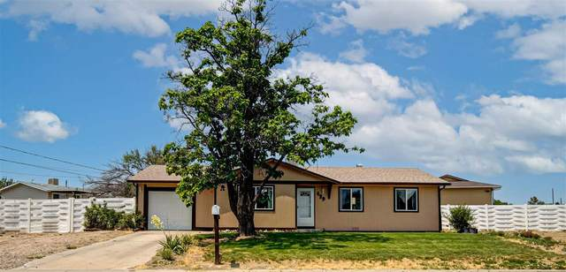 439 32 1/8 Road, Clifton, CO 81520 (MLS #20213054) :: The Kimbrough Team | RE/MAX 4000