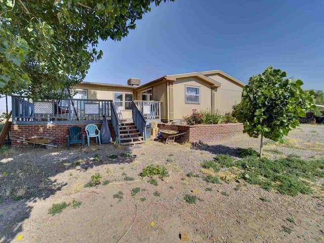 1827 Catalina Avenue, Fruita, CO 81521 (MLS #20213101) :: The Christi Reece Group