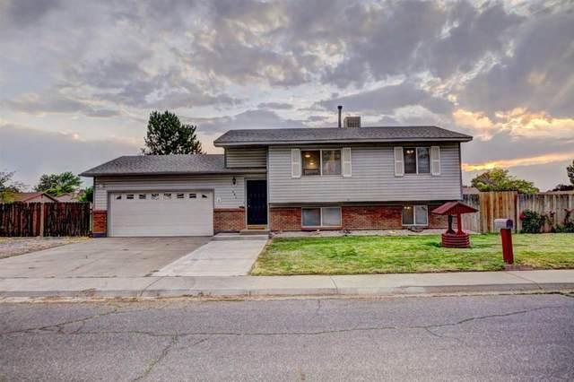 291 Huffer Lane, Grand Junction, CO 81503 (MLS #20213111) :: Lifestyle Living Real Estate