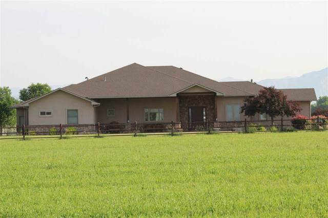 971 24 Road, Grand Junction, CO 81505 (MLS #20213112) :: The Christi Reece Group