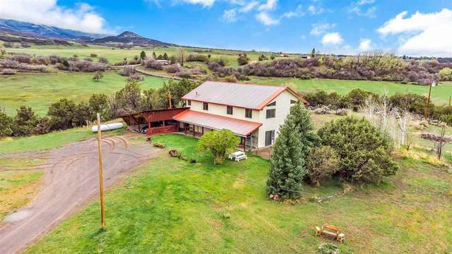 13244 60 Road, Collbran, CO 81624 (MLS #20213126) :: Lifestyle Living Real Estate