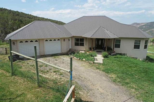 12000 46 6/10 Road, Mesa, CO 81643 (MLS #20213140) :: Lifestyle Living Real Estate