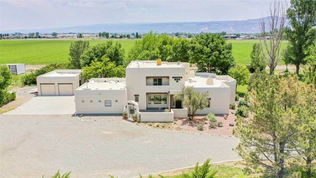 2025 L Road, Fruita, CO 81521 (MLS #20213146) :: Lifestyle Living Real Estate