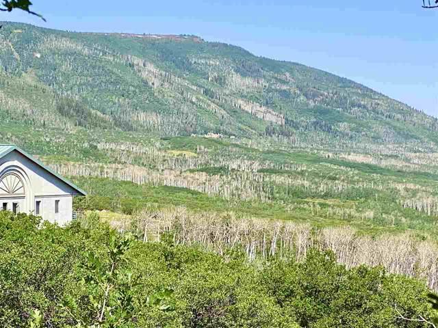 410 Coyote Run, Mesa, CO 81643 (MLS #20213150) :: Lifestyle Living Real Estate