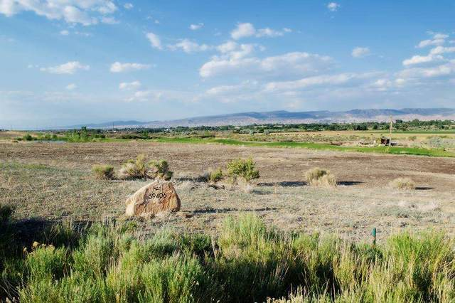 59406 Lone Eagle Road, Montrose, CO 81403 (MLS #20213159) :: Lifestyle Living Real Estate