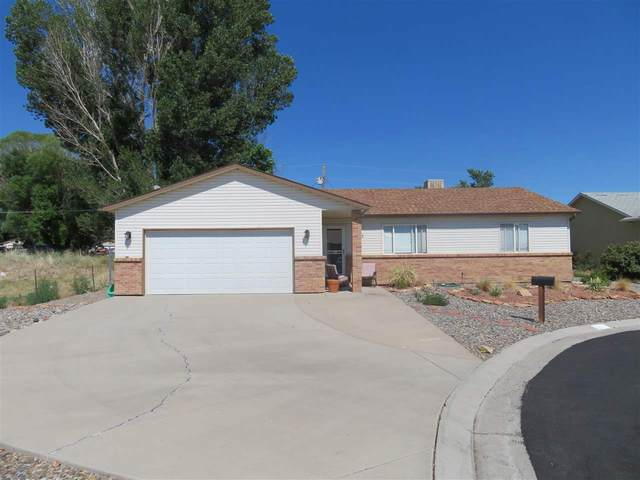 638 1/2 Pioneer Road, Grand Junction, CO 81504 (MLS #20213164) :: The Kimbrough Team | RE/MAX 4000