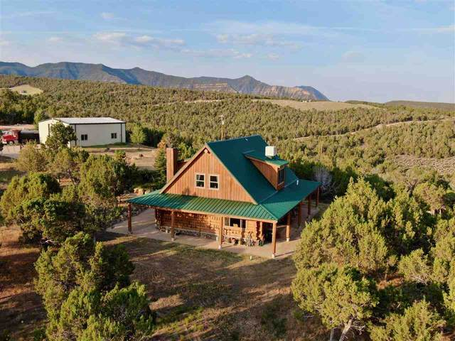 2277 House Top Mountain Road, Parachute, CO 81635 (MLS #20213173) :: Lifestyle Living Real Estate