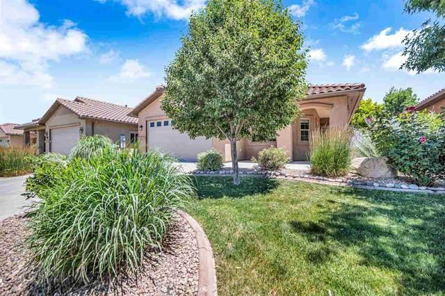 210 Love Mesa Drive, Grand Junction, CO 81503 (MLS #20213188) :: Michelle Ritter