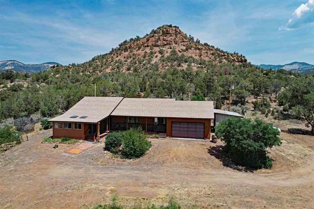 18251 Kimball Creek Road, Collbran, CO 81624 (MLS #20213330) :: CENTURY 21 CapRock Real Estate