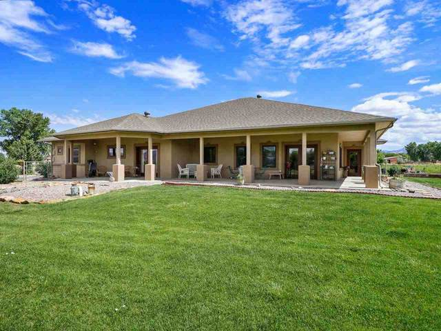 912 23 Road, Grand Junction, CO 81505 (MLS #20213356) :: Lifestyle Living Real Estate
