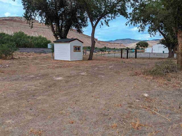 3670 G Road, Palisade, CO 81526 (MLS #20213364) :: CENTURY 21 CapRock Real Estate
