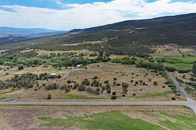 TBD IE Road, Mesa, CO 81643 (MLS #20213419) :: CENTURY 21 CapRock Real Estate