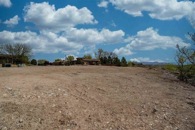 422 High Pointe Circle, Grand Junction, CO 81507 (MLS #20213509) :: The Christi Reece Group