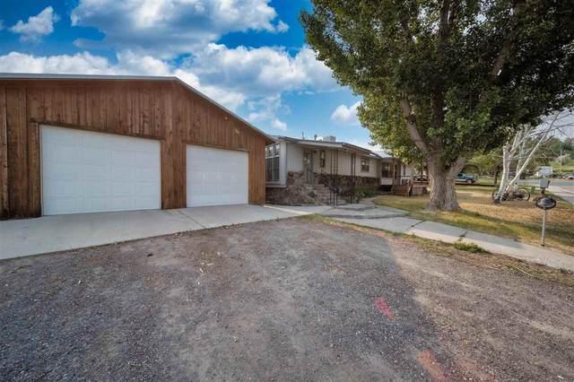 802 Wagon Wheel Court, Collbran, CO 81624 (MLS #20213563) :: CENTURY 21 CapRock Real Estate