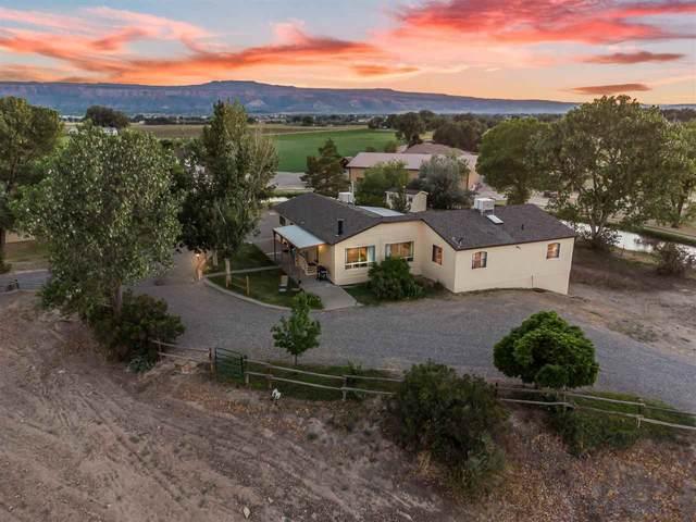 911 24 Road, Grand Junction, CO 81505 (MLS #20213579) :: CENTURY 21 CapRock Real Estate