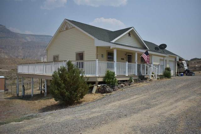 584 39 Road, Palisade, CO 81526 (MLS #20213602) :: CENTURY 21 CapRock Real Estate