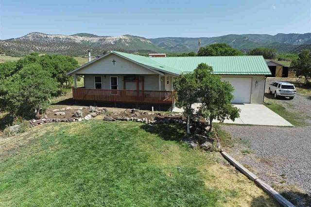 19363 Kimball Creek Road, Collbran, CO 81624 (MLS #20213630) :: The Grand Junction Group with Keller Williams Colorado West LLC