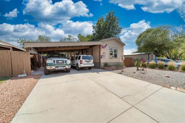 3067 1/2 Hummingbird Court, Grand Junction, CO 81504 (MLS #20213696) :: The Kimbrough Team | RE/MAX 4000
