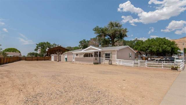 952 Iowa Avenue, Palisade, CO 81526 (MLS #20213729) :: CENTURY 21 CapRock Real Estate