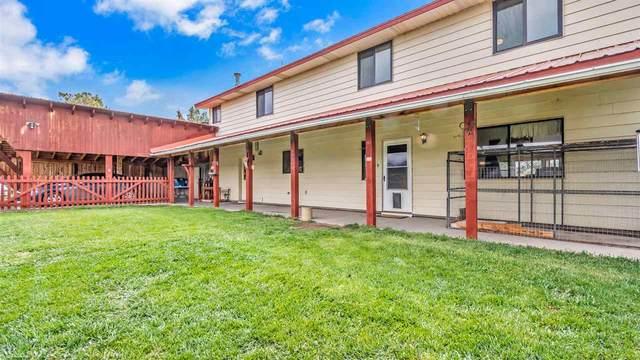 13244 60 Road, Collbran, CO 81624 (MLS #20213735) :: CENTURY 21 CapRock Real Estate