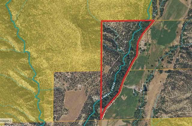 18259 Kimball Creek Road, Collbran, CO 81624 (MLS #20213799) :: Michelle Ritter