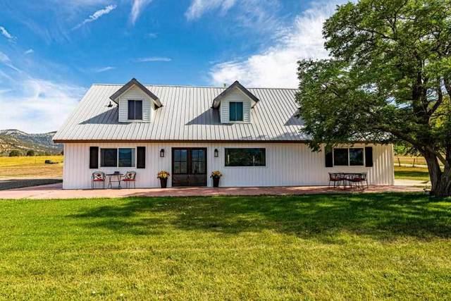 17511 Kimball Creek Road, Collbran, CO 81624 (MLS #20213808) :: CENTURY 21 CapRock Real Estate