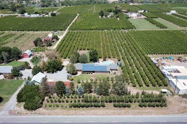 3840 G Road, Palisade, CO 81526 (MLS #20213823) :: CENTURY 21 CapRock Real Estate