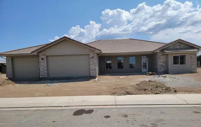 1380 Shoreline Drive, Fruita, CO 81521 (MLS #20213825) :: CENTURY 21 CapRock Real Estate