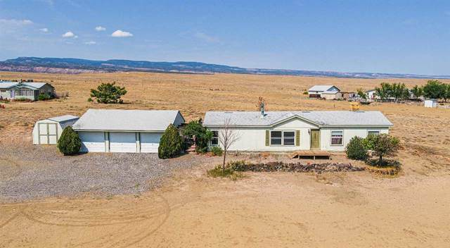 3201 Blair Road, Whitewater, CO 81527 (MLS #20213858) :: Michelle Ritter
