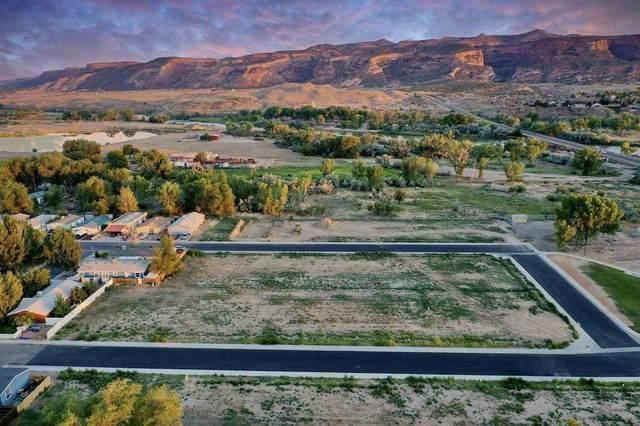 259 Holly Berry Way, Fruita, CO 81521 (MLS #20213877) :: CENTURY 21 CapRock Real Estate