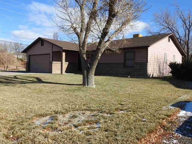 598 Gerken Road, Grand Junction, CO 81504 (MLS #20213899) :: CENTURY 21 CapRock Real Estate