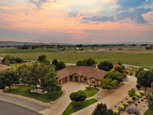 1014 Pritchard Mesa Court, Grand Junction, CO 81505 (MLS #20213980) :: The Christi Reece Group