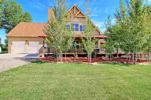 3341 Price Ditch Road, Clifton, CO 81520 (MLS #20214021) :: Michelle Ritter