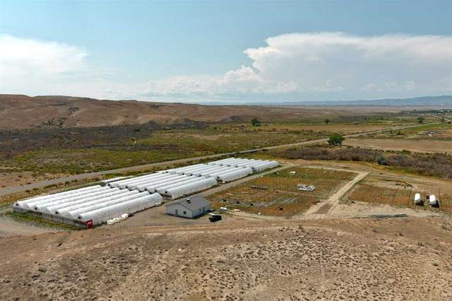 Greenhouses Old Highway 6&50, Mack, CO 81525 (MLS #20214192) :: The Christi Reece Group