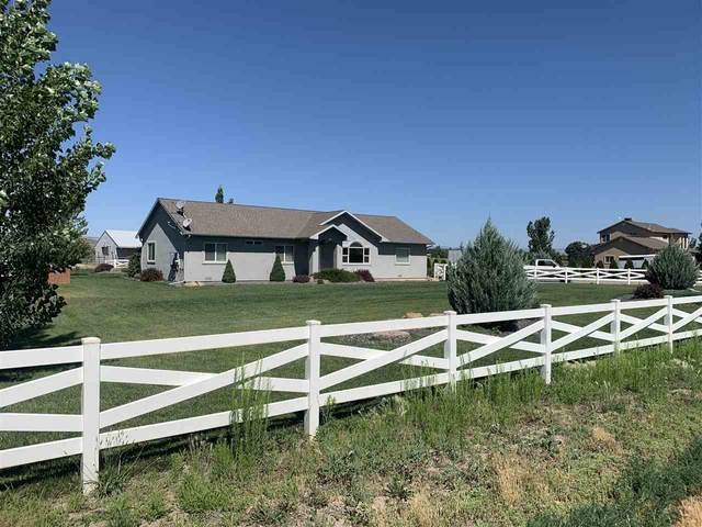 1271 14 Road, Loma, CO 81524 (MLS #20214204) :: Michelle Ritter