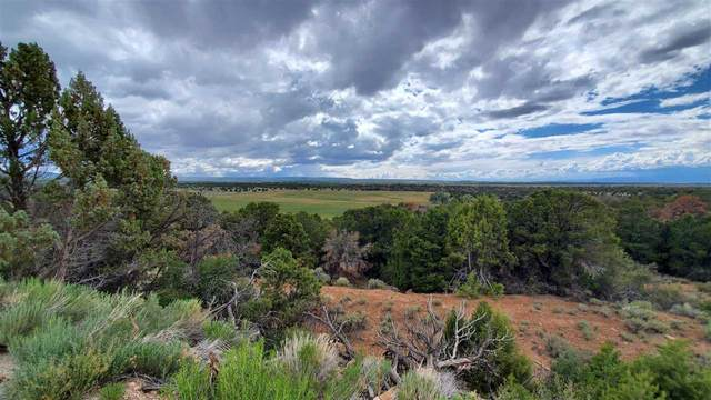 15321 Rollins Road, Glade Park, CO 81523 (MLS #20214241) :: The Grand Junction Group with Keller Williams Colorado West LLC