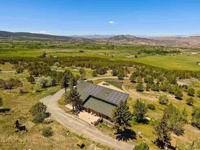 50158 Eagles Way, Mesa, CO 81643 (MLS #20214271) :: The Kimbrough Team | RE/MAX 4000