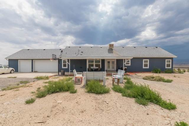 3484 Silverstone Drive, Whitewater, CO 81527 (MLS #20214358) :: The Christi Reece Group