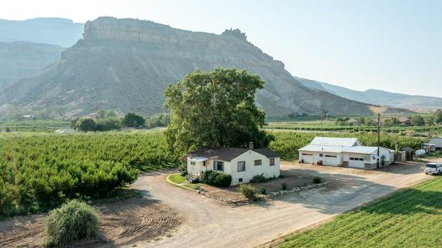 706 39 Road, Palisade, CO 81526 (MLS #20214363) :: The Kimbrough Team | RE/MAX 4000