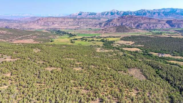 TBD 51 Road, Mesa, CO 81643 (MLS #20214376) :: The Christi Reece Group