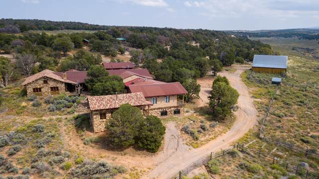430 Canyon Ridge Drive, Glade Park, CO 81523 (MLS #20214416) :: The Kimbrough Team   RE/MAX 4000
