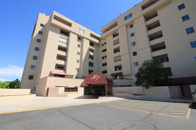 1111 Horizon Drive #310, Grand Junction, CO 81506 (MLS #20214431) :: Lifestyle Living Real Estate